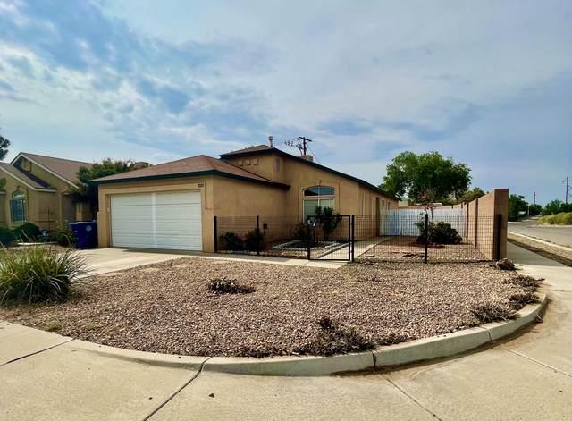10201 Round Up Place SW, Albuquerque, NM 87121 (MLS #997231) :: Sandi Pressley Team