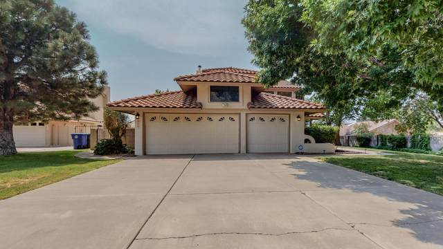 7505 Jacobo Drive NE, Albuquerque, NM 87109 (MLS #997256) :: Sandi Pressley Team
