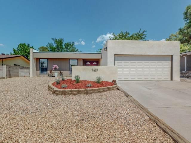 7624 Buckboard Avenue NE, Albuquerque, NM 87109 (MLS #997260) :: Sandi Pressley Team