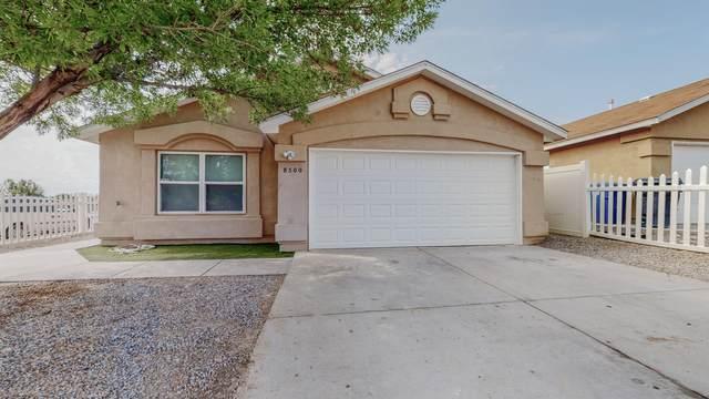 8500 Rancher Road SW, Albuquerque, NM 87121 (MLS #997276) :: Sandi Pressley Team