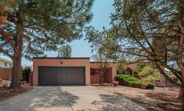 14208 La Cueva Avenue NE, Albuquerque, NM 87123 (MLS #997295) :: Sandi Pressley Team