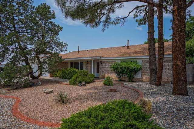 8711 Delamar Avenue NE, Albuquerque, NM 87111 (MLS #997300) :: Sandi Pressley Team