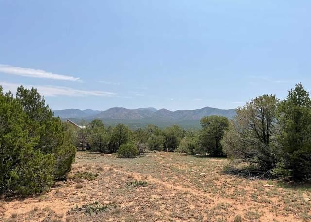 66 Moccasin Trail, Sandia Park, NM 87047 (MLS #997312) :: Keller Williams Realty