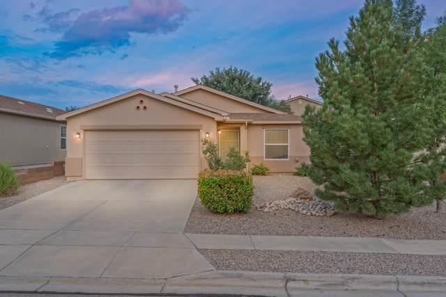 1216 Spruce Meadows Drive NE, Rio Rancho, NM 87144 (MLS #997330) :: Sandi Pressley Team