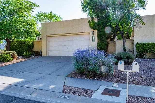 7936 Woodwind Drive NE, Albuquerque, NM 87109 (MLS #997332) :: Sandi Pressley Team
