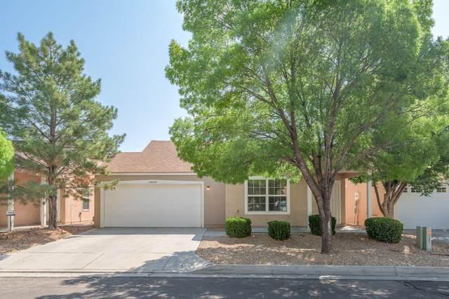 10608 Hatch Drive NW, Albuquerque, NM 87114 (MLS #997342) :: Sandi Pressley Team