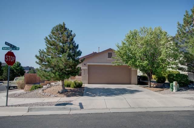 10628 Mcmichael Lane SW, Albuquerque, NM 87121 (MLS #997356) :: Keller Williams Realty
