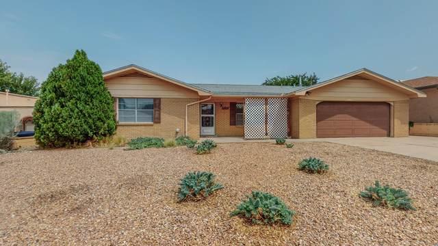 12533 Elaine Place NE, Albuquerque, NM 87112 (MLS #997371) :: Sandi Pressley Team