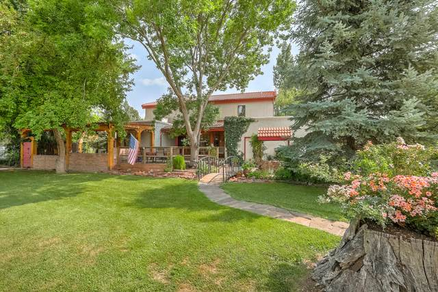 740 Calle De Wences, Los Lunas, NM 87031 (MLS #997372) :: Sandi Pressley Team