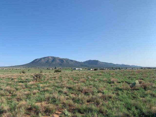 21 Northland Meadows Place, Edgewood, NM 87015 (MLS #997393) :: Campbell & Campbell Real Estate Services