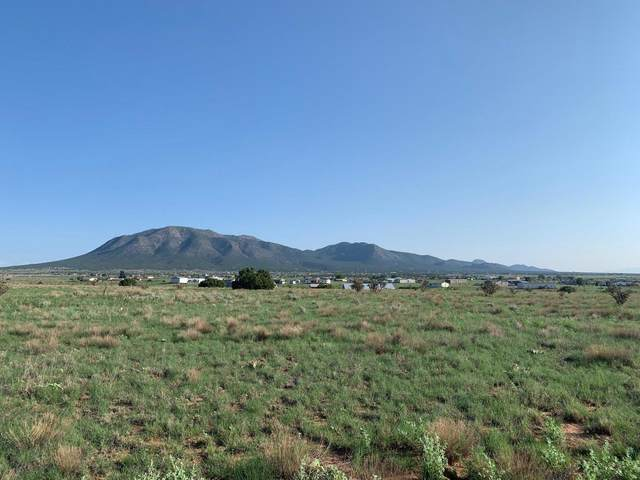 22 Northland Meadows Place, Edgewood, NM 87015 (MLS #997394) :: Campbell & Campbell Real Estate Services