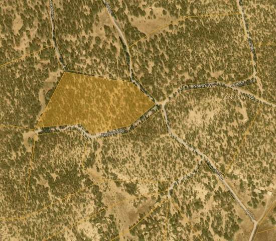 Lot 21 Old Well And Normas Road, Ramah, NM 87321 (MLS #997406) :: Campbell & Campbell Real Estate Services