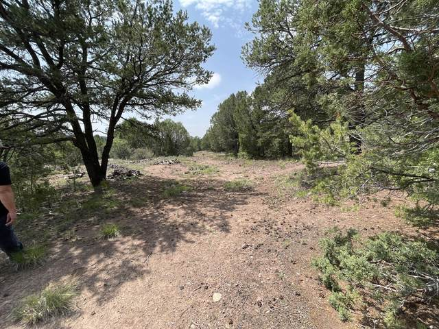 19 Puesta Del Sol, Cedar Crest, NM 87008 (MLS #997423) :: The Buchman Group