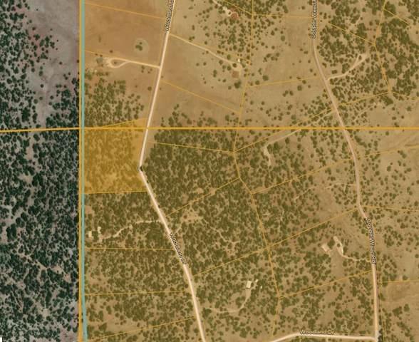 Lot 2 Woodland Road, Ramah, NM 87321 (MLS #997445) :: Sandi Pressley Team