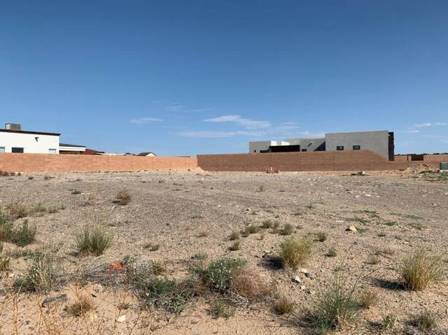 6501 Pato Road NW, Albuquerque, NM 87120 (MLS #997465) :: Campbell & Campbell Real Estate Services