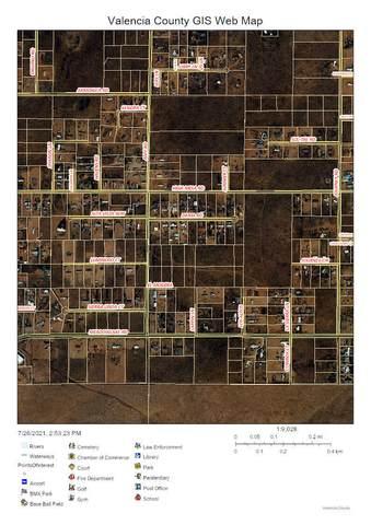 High Mesa, Los Lunas, NM 87031 (MLS #997473) :: Keller Williams Realty