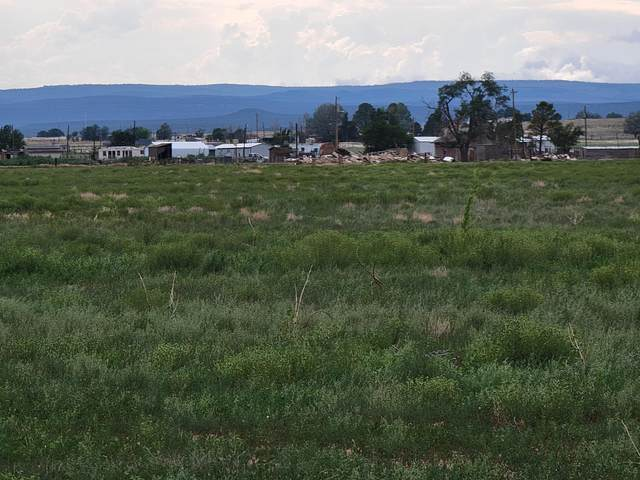 1540 Nm-41, Estancia, NM 87016 (MLS #997532) :: Campbell & Campbell Real Estate Services