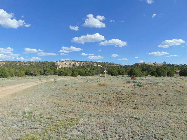 4268 Ice Caves Road, Ramah, NM 87321 (MLS #997551) :: Campbell & Campbell Real Estate Services