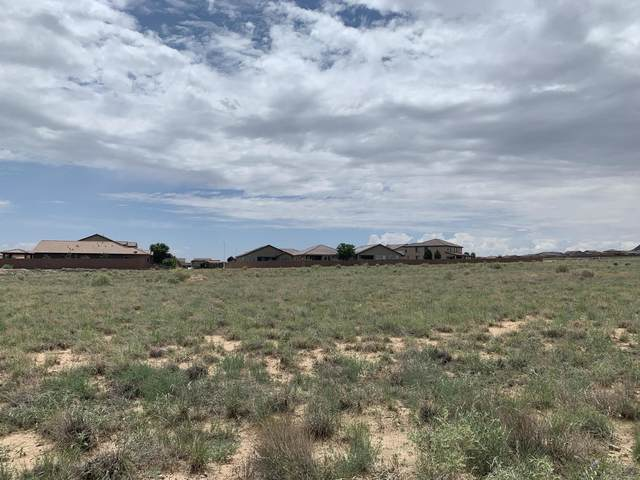 Scenic NW, Albuquerque, NM 87120 (MLS #997622) :: Campbell & Campbell Real Estate Services