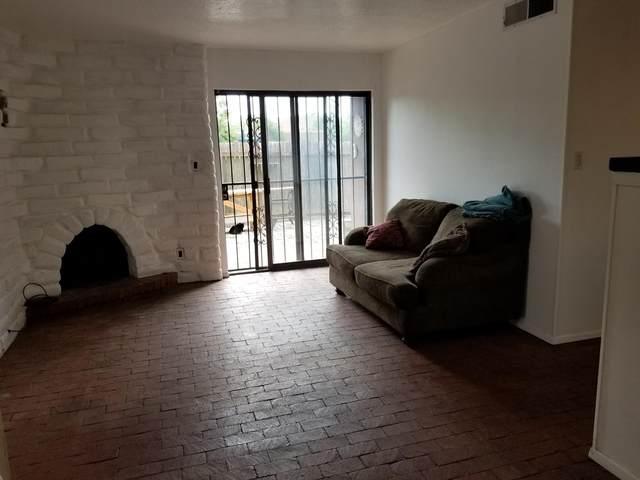 235 La Vida Nueva Del Oeste, Albuquerque, NM 87105 (MLS #997654) :: Campbell & Campbell Real Estate Services