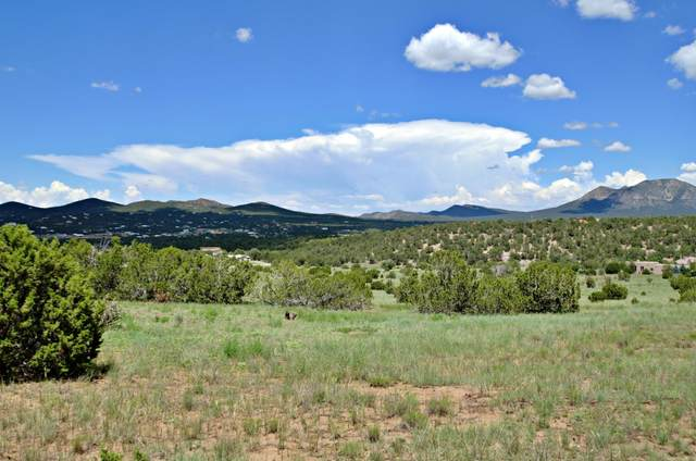 Kings Rd, Sandia Park, NM 87047 (MLS #997659) :: Campbell & Campbell Real Estate Services