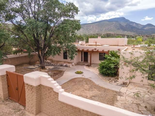 33 Camino De Las Huertas, Placitas, NM 87043 (MLS #997671) :: Campbell & Campbell Real Estate Services