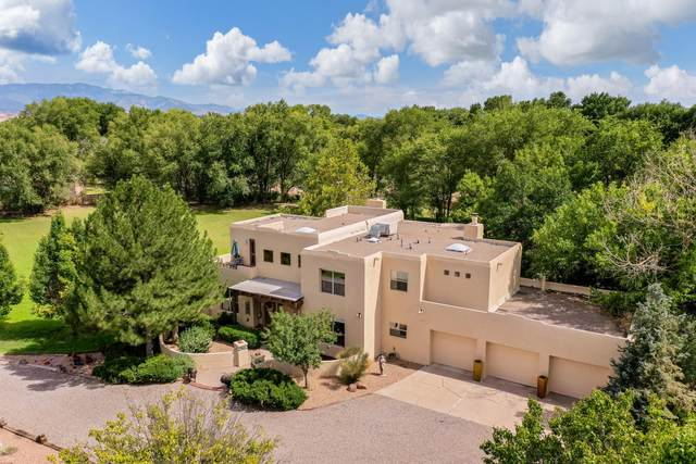 203 N Felice Perea Road, Corrales, NM 87048 (MLS #997678) :: Campbell & Campbell Real Estate Services