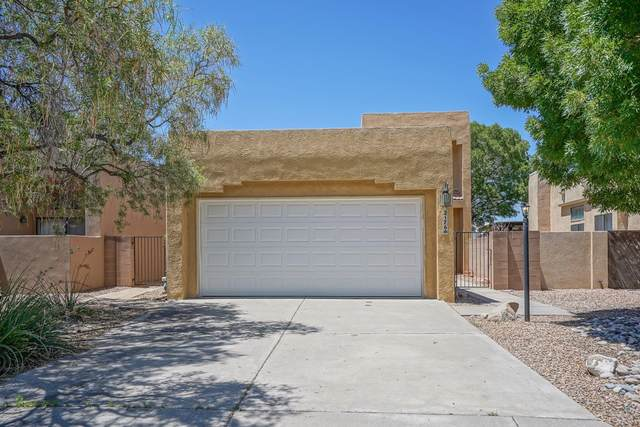 2176 Black Willow Drive NE, Albuquerque, NM 87122 (MLS #997702) :: Campbell & Campbell Real Estate Services