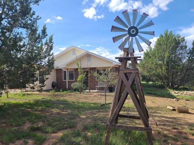 5 Appaloosa Lane, Edgewood, NM 87015 (MLS #997781) :: Campbell & Campbell Real Estate Services