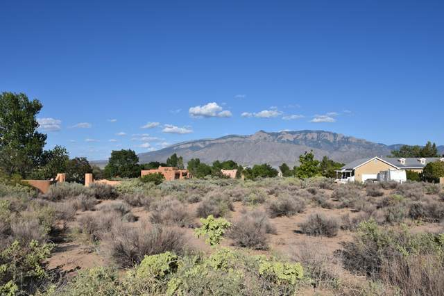 165 Anya Road, Corrales, NM 87048 (MLS #997795) :: Campbell & Campbell Real Estate Services