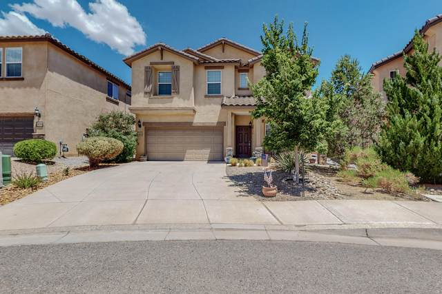 420 Vista Roja Place, Rio Rancho, NM 87124 (MLS #997805) :: Campbell & Campbell Real Estate Services
