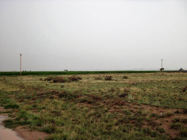 Paso Ranch Rd & Sam Ford, McIntosh, NM 87032 (MLS #997806) :: Campbell & Campbell Real Estate Services