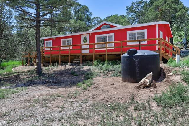 41 Little Dipper Road, Tijeras, NM 87059 (MLS #997895) :: Campbell & Campbell Real Estate Services