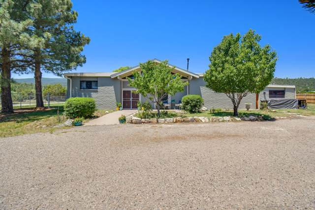 18 Conejo Road, Cedar Crest, NM 87008 (MLS #997940) :: Campbell & Campbell Real Estate Services