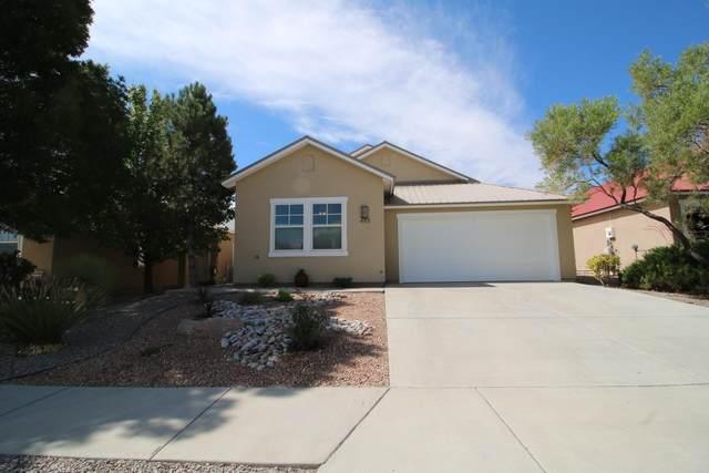 453 Minturn Loop NE, Rio Rancho, NM 87124 (MLS #997966) :: The Buchman Group