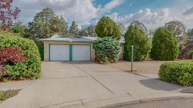 3304 Black Hills Court NE, Albuquerque, NM 87111 (MLS #998027) :: Keller Williams Realty