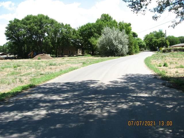 0 Forgotten Promise Lane, Peralta, NM 87042 (MLS #998044) :: Sandi Pressley Team