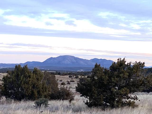 510 State Hwy 217 Road, Edgewood, NM 87015 (MLS #998097) :: Campbell & Campbell Real Estate Services