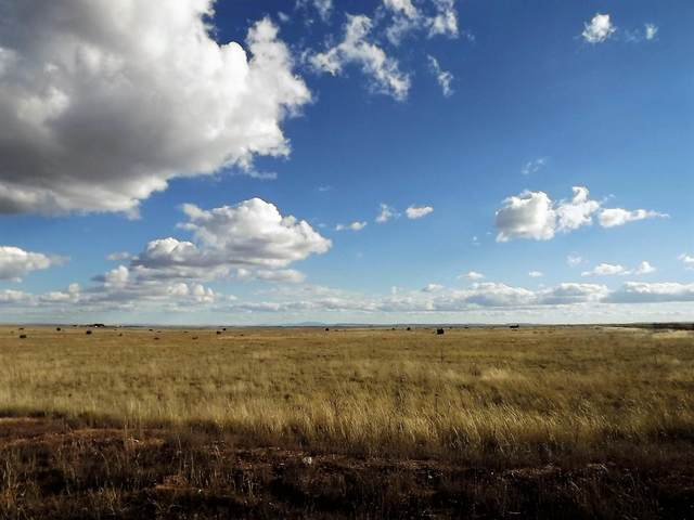 22 Palomino Drive, Moriarty, NM 87035 (MLS #998117) :: Campbell & Campbell Real Estate Services