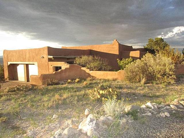 68 Overlook Drive, Placitas, NM 87043 (MLS #998146) :: Campbell & Campbell Real Estate Services