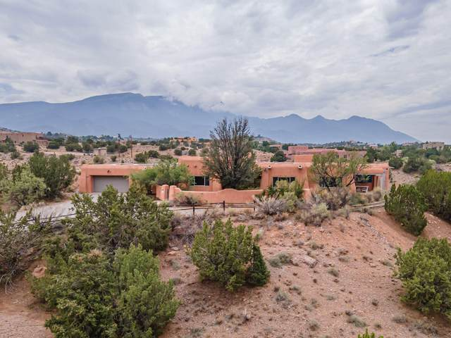 38 Calle Chamisa, Placitas, NM 87043 (MLS #998171) :: Campbell & Campbell Real Estate Services