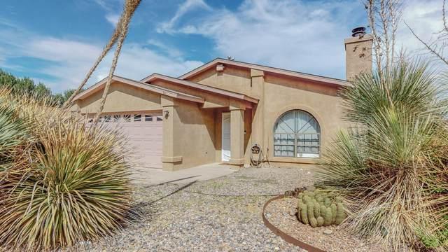 841 Juan De Jesus Court, Los Lunas, NM 87031 (MLS #998183) :: Campbell & Campbell Real Estate Services
