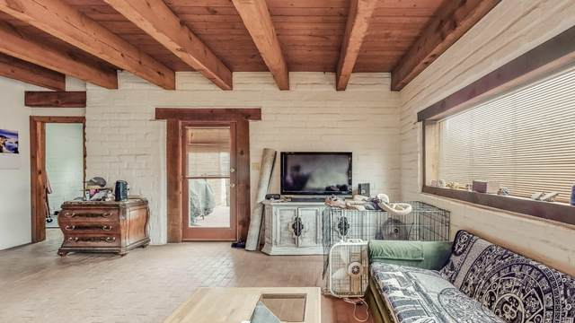 1200 Hollywood Boulevard, Corrales, NM 87048 (MLS #998197) :: Campbell & Campbell Real Estate Services