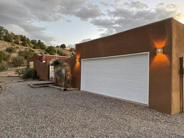 22 Cienega Canyon Road, Placitas, NM 87043 (MLS #998221) :: Campbell & Campbell Real Estate Services