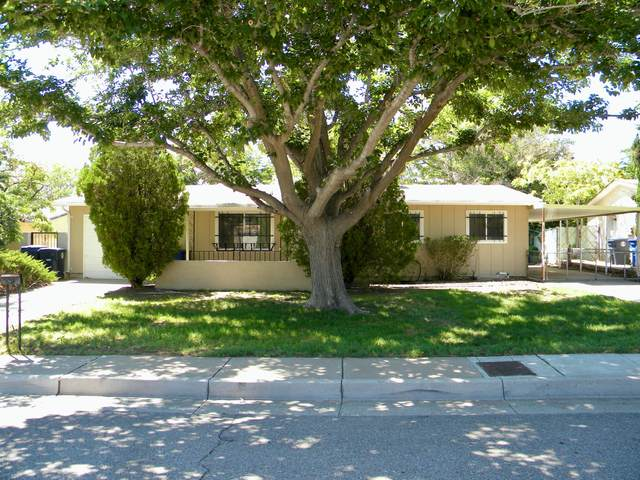 805 Mildred Street NE, Albuquerque, NM 87123 (MLS #998284) :: Campbell & Campbell Real Estate Services