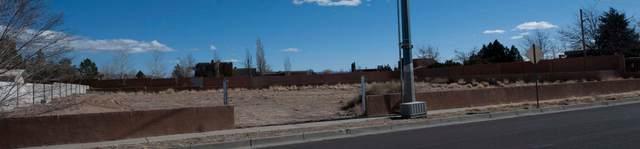 3120 Vista Grande Drive NW, Albuquerque, NM 87102 (MLS #998297) :: Campbell & Campbell Real Estate Services