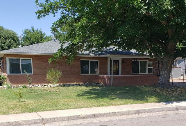 8715 Woodland Avenue NE, Albuquerque, NM 87112 (MLS #998299) :: Campbell & Campbell Real Estate Services