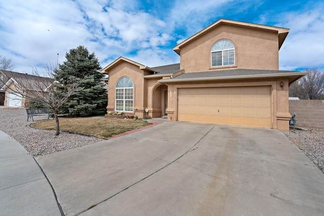 6905 Luz De La Luna Place NW, Albuquerque, NM 87114 (MLS #998310) :: Campbell & Campbell Real Estate Services