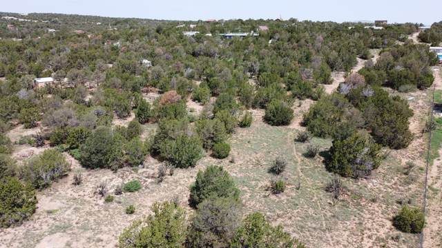 Tbd Monica Lane, Edgewood, NM 87015 (MLS #998333) :: Campbell & Campbell Real Estate Services