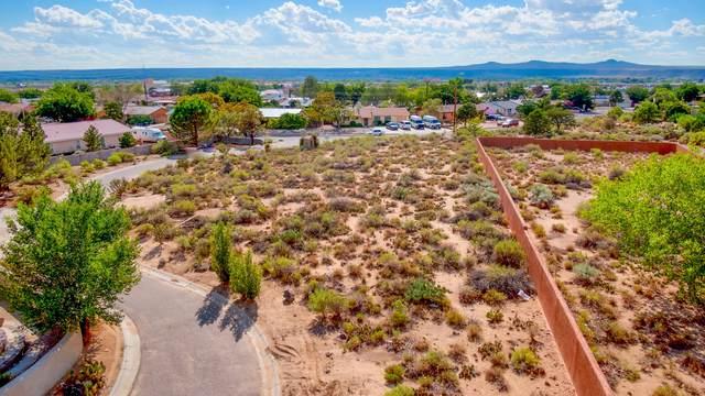Vista Grande Drive NW, Albuquerque, NM 87120 (MLS #998352) :: Campbell & Campbell Real Estate Services